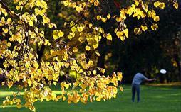 Die schönsten Parks und Gärten