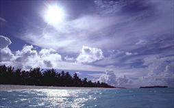 Dark Beach - Insel des Grauens
