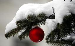 Die beliebtesten Weihnachtslieder