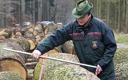 Siberian Cut - Holzfäller am Limit