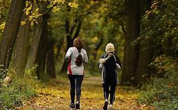 aktiv und gesund