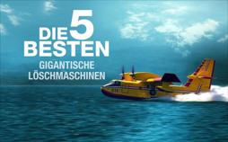 Die fünf Besten