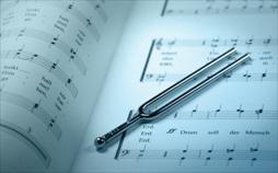 Die Sinfonische Dichtung