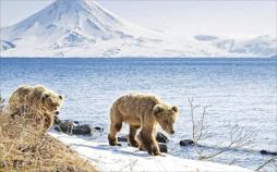 Abenteuer Russland nonstop - Zu den Vulkanen von Kamtschatka