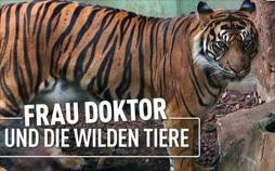 Frau Doktor und die wilden Tiere