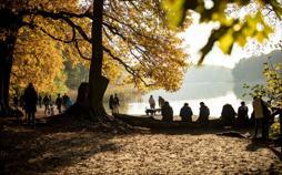 Berliner Nächte - Herbst