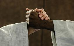Judo Show