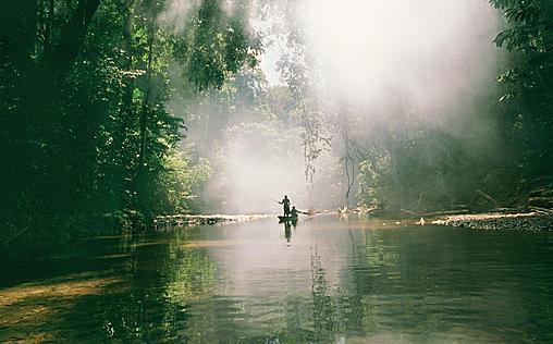 Kolumbiens wilde Schönheit   Im Dschungel des Chocó